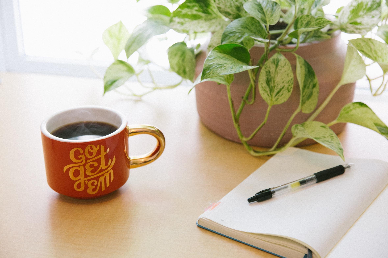 'Go get them' inspirational mug