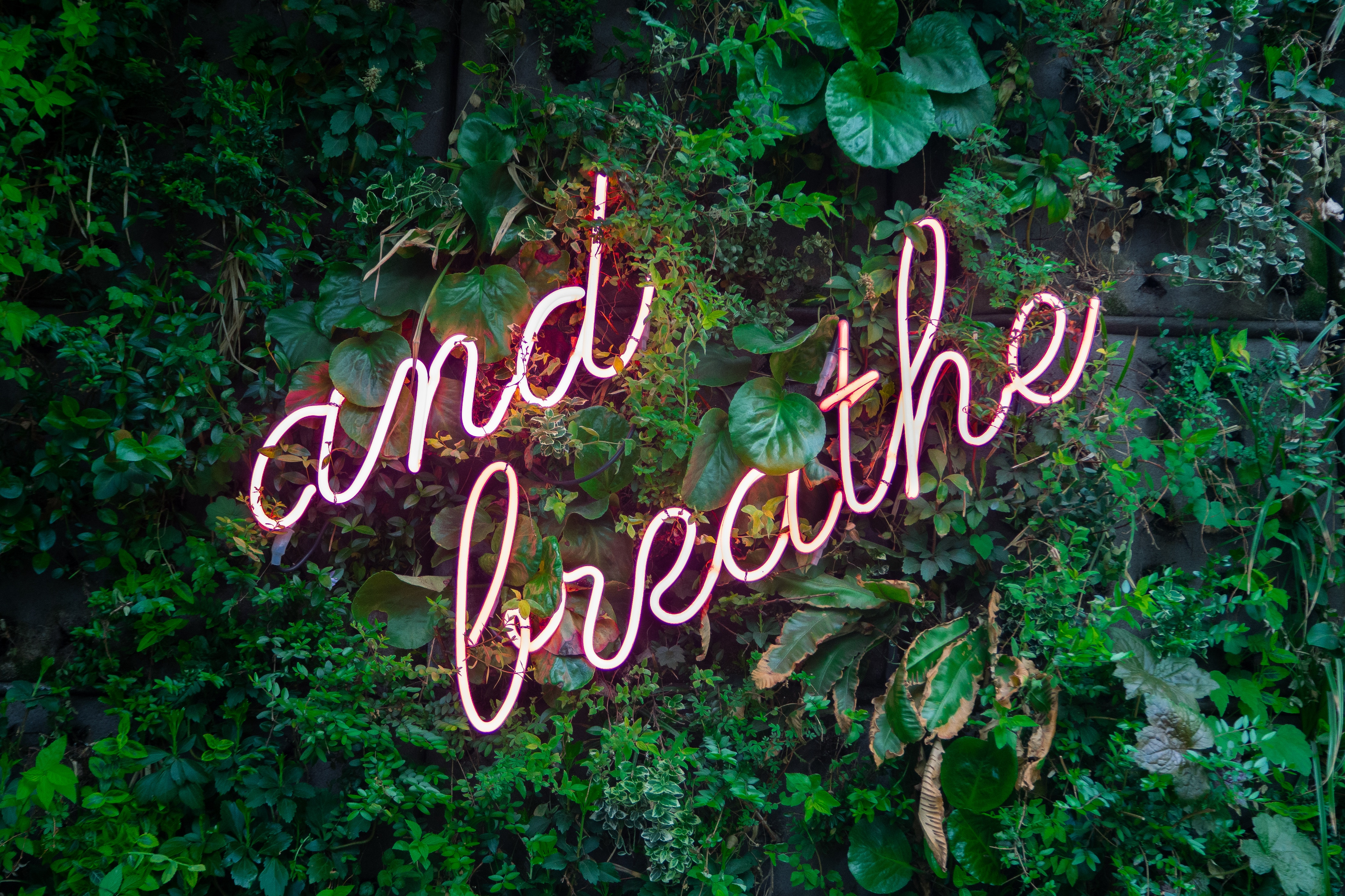 and breath neon sign